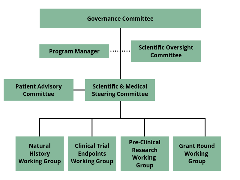 Governance Committee Chart (1)